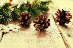 Weihnachtsdekorationen mit Tannenbaumast, Kegel Stockfoto