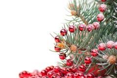 Weihnachtsdekorationen mit Zweig des Baums auf Weiß lizenzfreies stockfoto