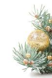 Weihnachtsdekorationen mit Zweig des Baums auf Weiß lizenzfreie stockbilder