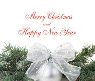 Weihnachtsdekorationen mit Zweig des Baums auf Weiß lizenzfreies stockbild