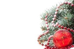 Weihnachtsdekorationen mit Zweig des Baums auf Weiß lizenzfreie stockfotografie