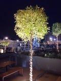 Weihnachtsdekorations-Weihnachtsbaum Athen Griechenland Lizenzfreies Stockbild