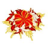 Weihnachtsdekorationsbögen mit Poinsettiavektor Stockbild