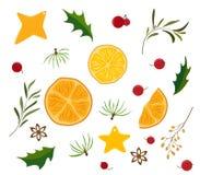 Weihnachtsdekorativer Satz Zweige, Beeren, Blätter, Plätzchen und trockene Orange und Zitronenscheiben vektor abbildung