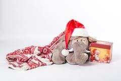 Weihnachtselefant Lizenzfreie Stockfotografie