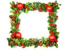 Weihnachtsfeld in der Stechpalme Stockfotografie