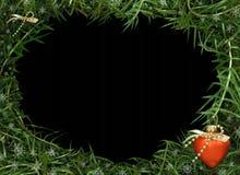 Weihnachtsfeld für Foto und Video Lizenzfreie Stockfotos