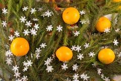 Weihnachtsfestliche Dekoration von Tannenzweigen, Tangerinen, Schneeflocken Lizenzfreie Stockfotos