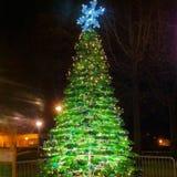 Weihnachtsflaschenbaum Stockfoto