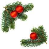 Weihnachtsflitter- und -kiefernniederlassungen, lokalisiert Lizenzfreie Stockfotografie