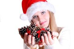 Weihnachtsfrau Stockfotografie