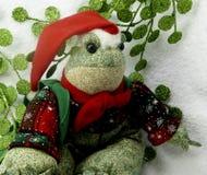 Weihnachtsfrosch stockfotos