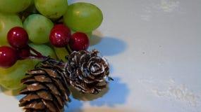 Weihnachtsfrucht Lizenzfreies Stockbild