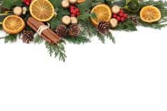Weihnachtsfrucht-Grenze Stockbild