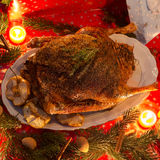 Weihnachtsgans Lizenzfreies Stockfoto