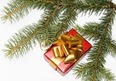 Weihnachtsgeschenk Lizenzfreies Stockbild