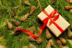 Weihnachtsgeschenk auf Kiefernniederlassungen Stockbilder