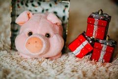Weihnachtsgeschenk mit rosa Plüschspielzeugschwein lizenzfreies stockbild