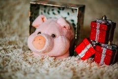 Weihnachtsgeschenk mit rosa Plüschspielzeugschwein lizenzfreie stockfotografie