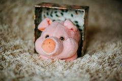Weihnachtsgeschenk mit rosa Plüschspielzeugschwein stockfotos