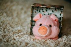 Weihnachtsgeschenk mit rosa Plüschspielzeugschwein stockbild