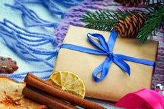 Weihnachtsgeschenkbox, Tannenbaumast und Winterschal Lizenzfreie Stockbilder