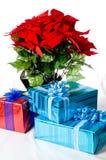 Weihnachtsgeschenke und Poinsettia stockfotos