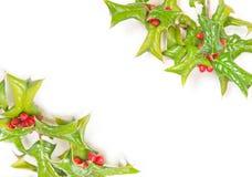 Weihnachtsgrüner Stechpalme-Beerenrahmen stockbild