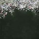 Weihnachtsgrenze mit schneebedeckten Tannenzweigen, Stechpalme, Kegel auf dunklem Ba Stockfotos