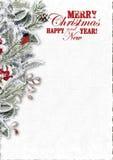 Weihnachtsgruß-Karte mit schneebedeckten Niederlassungen und Dompfaff Stockbild