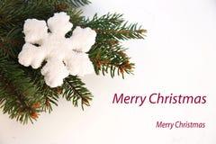 Weihnachtsgrußkarte mit Flocke vektor abbildung