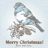 Weihnachtshand gezeichnete Tintenkarte mit Bullfinch Lizenzfreie Stockbilder