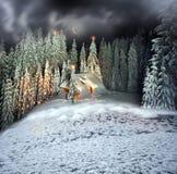 Weihnachtshaus in den Karpaten lizenzfreie stockfotografie