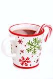 Weihnachtsheißes Kakaogetränk stockbild