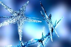 Weihnachtshelle Sterne Lizenzfreie Stockfotos