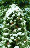 Weihnachtshintergrund. lizenzfreies stockbild