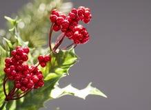 Weihnachtshintergrund auf grauem Hintergrund lizenzfreies stockbild