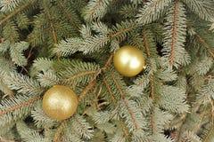Weihnachtshintergrund - goldene Bälle auf einer Niederlassung des gezierten Baums lizenzfreie stockfotos