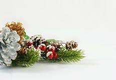 Weihnachtshintergrund mit Beeren und Kiefernkegeln Stockfoto