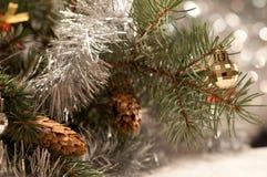 Weihnachtshintergrund mit einem Zweig einer Fichte Stockbilder