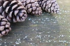 Weihnachtshintergrund mit Kiefernkegeln im Weinleseton Stockbilder
