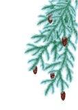 Weihnachtshintergrund mit Nadel und Schnee Lizenzfreie Stockfotos