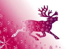 Weihnachtshintergrund mit Rotwild Stockbild