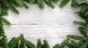 Weihnachtshintergrund mit Tannenzweigen auf weißem hölzernem Brett Lizenzfreies Stockbild