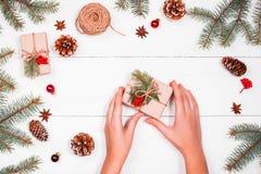 Weihnachtshintergrund mit Tannenzweigen, Kiefernkegel, Strang des Jutefasers, rote Dekorationen Stockfoto