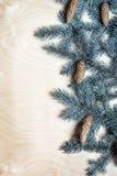 Weihnachtshintergrund mit Tannenzweigen und pinecones Lizenzfreie Stockfotografie