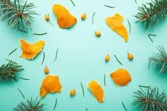 Weihnachtshintergrund von den natürlichen Niederlassungen und von den Tangerinen Flache Lage lizenzfreies stockbild
