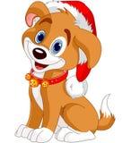 Weihnachtshund Stockbild