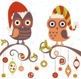 Weihnachtskarte der Eulen in den Hüten Stockfotografie