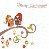 Weihnachtskarte der Eulen in den Hüten Lizenzfreie Stockfotos